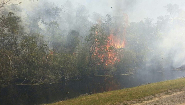 BRIAN VAN DRUTEN STILL BURNING: The Whipping Creek Fire blazes on along Maple Road, as crews struggle to keep it contained.